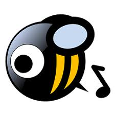 MusicBee 3.3.7491 Crack + Serial Key 2021 Free Download