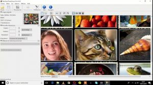 Benvista PhotoZoom Pro 8.0.6 With Crack + Mac 2020 Free Download
