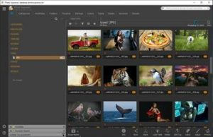 IDimager Photo Supreme 5.3.1.2678 Crack + Serial Key Free Download
